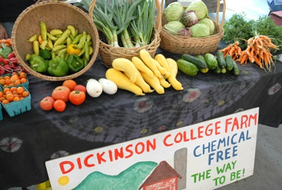 Fall Produce stand on campus at Dickinson College- all of these veggies were grown on their farm!