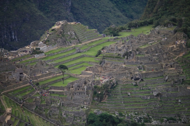 Machu Piccu (Photo Credit: Luke Fisher)
