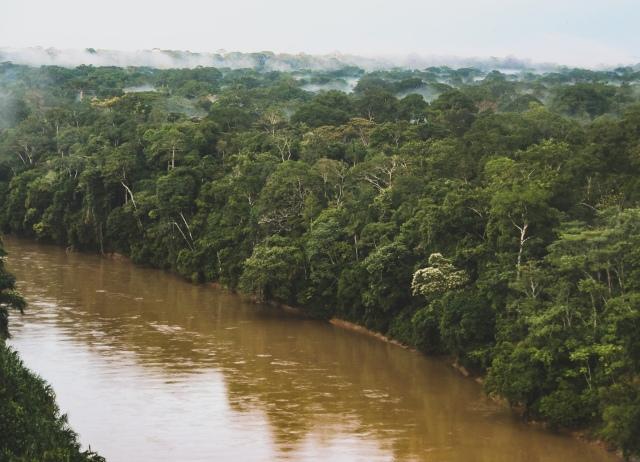 Peru's Las Piedras River in the SE Amazon Rainforest